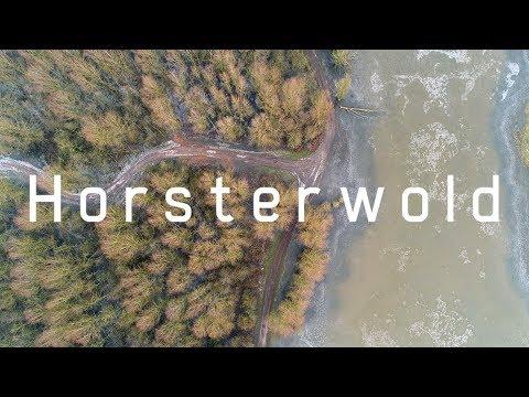 Horsterwold in de winter (Zeewolde, Nederland) | Drone Video 4K
